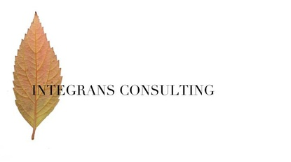 Integrans Consulting
