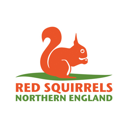 Red Squirrels Northern England
